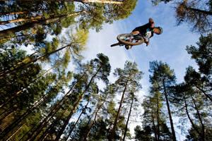 MTB dirt jumper by adamduckworth