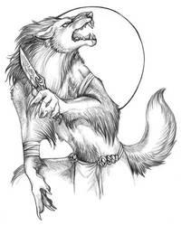 wolf warrior by warriorslullaby
