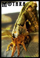 Mothra by chamzi