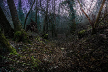 Dusk at the murky valley by Koljan