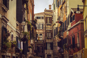 Venice Street by iTomoo