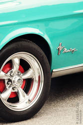 Beautiful turquoise mustang by Kluschi