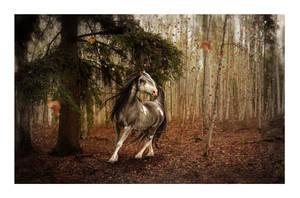 under slow dancing trees by Veradaine