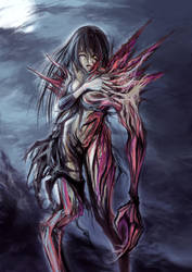 Transformation by Haimerejzero