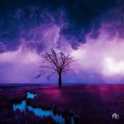 The First Tree by MBHenriksen