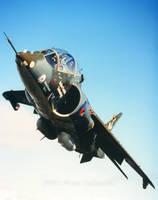 Harrier T4 XW175 VAAC by fighterman35
