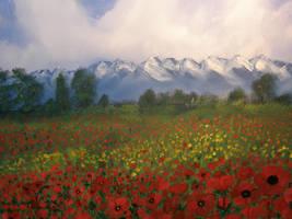 poppy field by renatoart