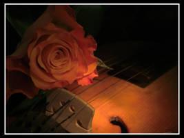 Still life rose I by renatoart