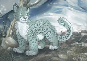 Snow Leopard for curious-nox by charfade