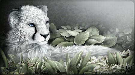 White Cheetah by charfade