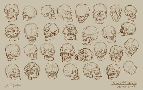 30 - 2min Skull Studies by charfade