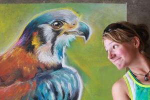 American Kestrel Chalk Art Close up by charfade