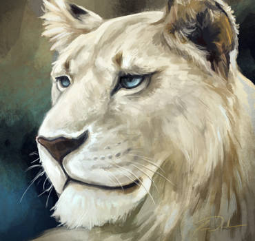 Lioness Eona by charfade