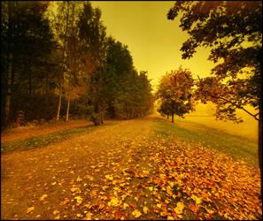 autumn feeling .. V by KariLiimatainen