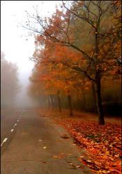 autumn feeling ..XX by KariLiimatainen