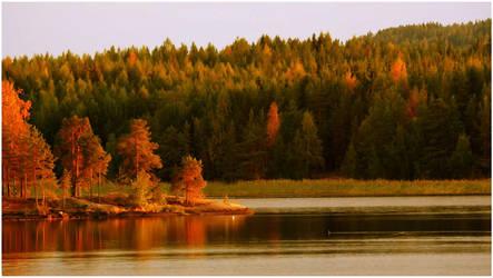 autumn colours  xxx by KariLiimatainen