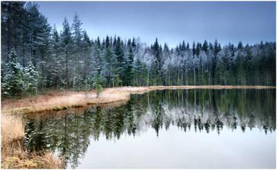 winter time is coming .....III by KariLiimatainen