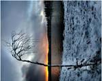 winter XI by KariLiimatainen