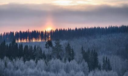 winter afternoon in Finland by KariLiimatainen