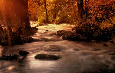scent of autumn by KariLiimatainen