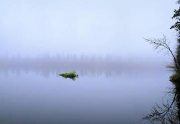 eerie swamp by KariLiimatainen