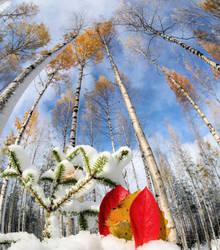 autumn or winter by KariLiimatainen