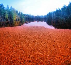 Autumn Mood II by KariLiimatainen