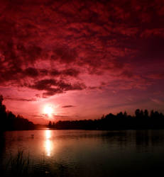 pink dream . by KariLiimatainen