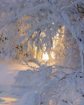 Door to another world by KariLiimatainen