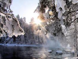 enjoy the sunlight by KariLiimatainen