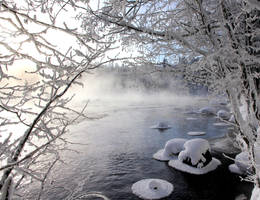 winter life .. by KariLiimatainen