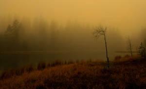 silence by KariLiimatainen