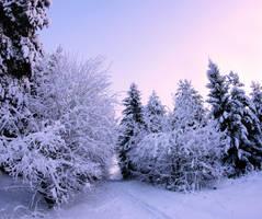 winter day by KariLiimatainen