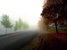 misty autumn road by KariLiimatainen