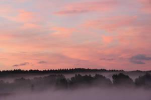 Misty by KariLiimatainen