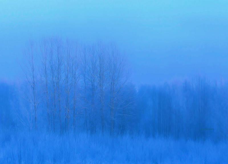 Blue moment by KariLiimatainen