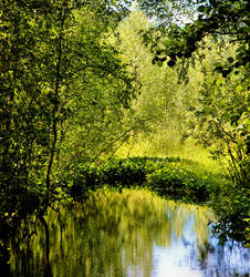 Green time by KariLiimatainen