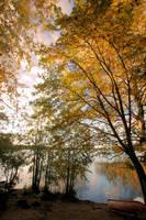 Nice autumn day by KariLiimatainen
