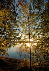 Autumn colours . ... by KariLiimatainen