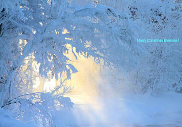 Merry Christmas Everone ! by KariLiimatainen