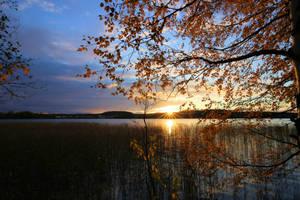 Autumn night by KariLiimatainen