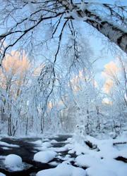 Nice winter day.. by KariLiimatainen