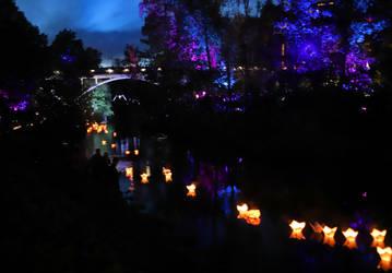 City of Light Jyvaskyla Finland II by KariLiimatainen