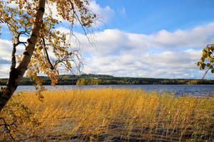 Autumn in town .. by KariLiimatainen