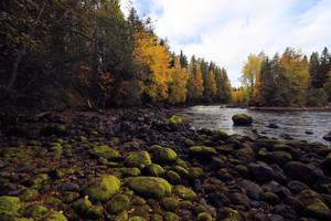 Autumn on the river. by KariLiimatainen
