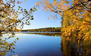 Nice autumn day. by KariLiimatainen