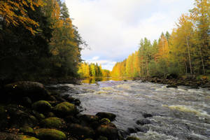 Nice day autumn on the river by KariLiimatainen