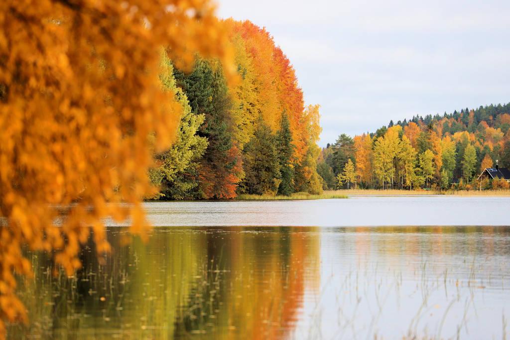 Autumn colours by KariLiimatainen