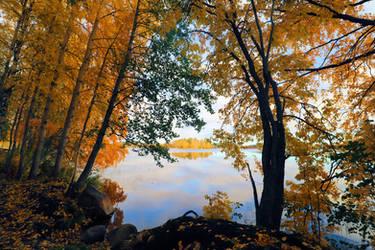 Yellow in jyvaskyla by KariLiimatainen