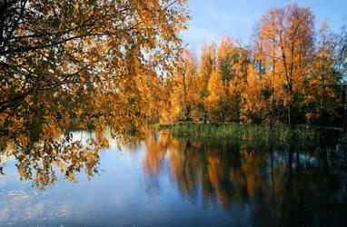 Autumn in Finland .. by KariLiimatainen